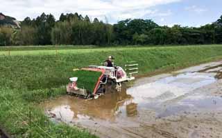 トラクターが作業中